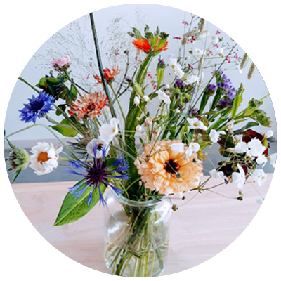 bloemen pluktuin Fruitbos
